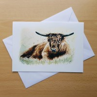 Various Wildlife A5 Greetings Card -  Just Resting - Highland Cow