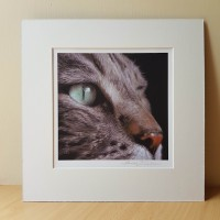 Wildcat Signed Mounted Print by Alanda Calmus