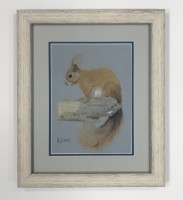 Pastel painting of a red squirrel