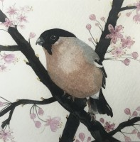 Bullfinch and Blossom