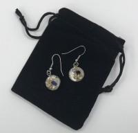 Mother of pearl shell drop earrings.