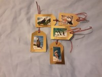 Seabirds Gift Tags -  Brown Background