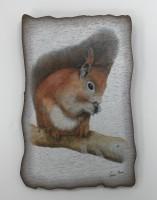 Plaque Red Squirrel