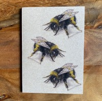 Pocket Notebook - Three Bees