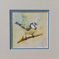 Bluetit Bird Original Mixed Media Mounted Painting by Alanda Calmus