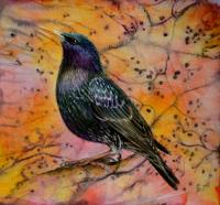 Starbright - Starling Bird Original Mixed Media Painting by Alanda Calmus